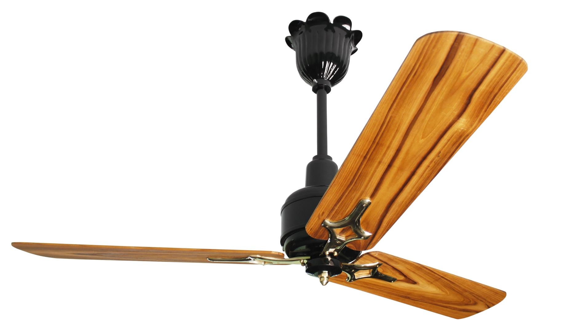 1300 mm  Heritage Glossy Black with Solid Teak Blades Brass Accssories (Large)