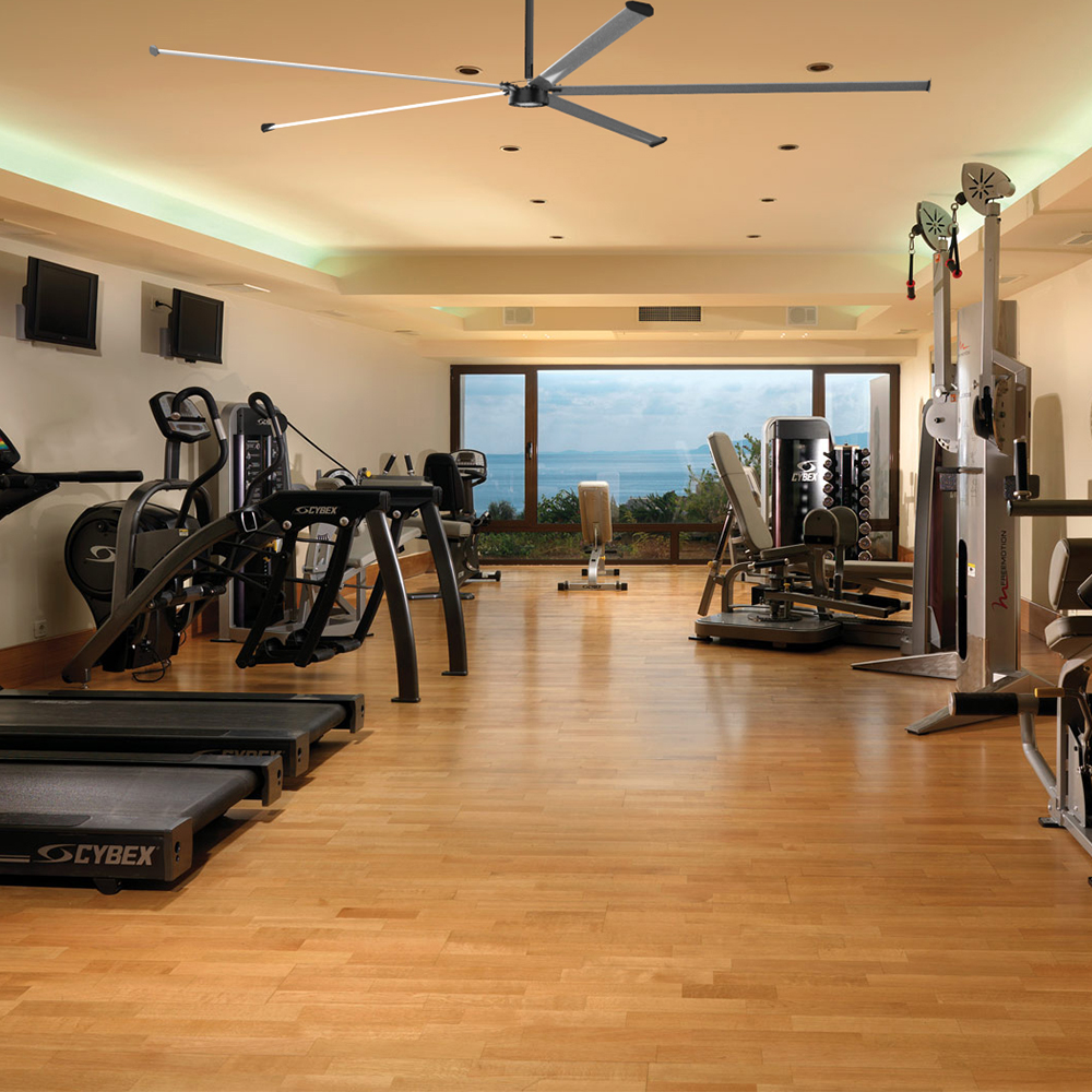 Indoor sports center ceiling fans gym